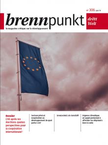 L'Union européenne après les élections: quelles perspectives pour la coopération internationale?