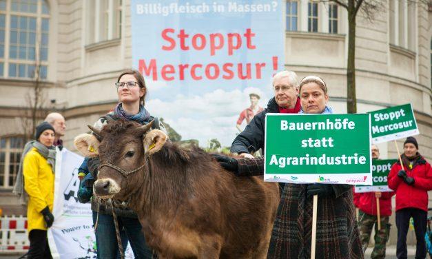 L'accord commercial UE-Mercosur, un coup d'État