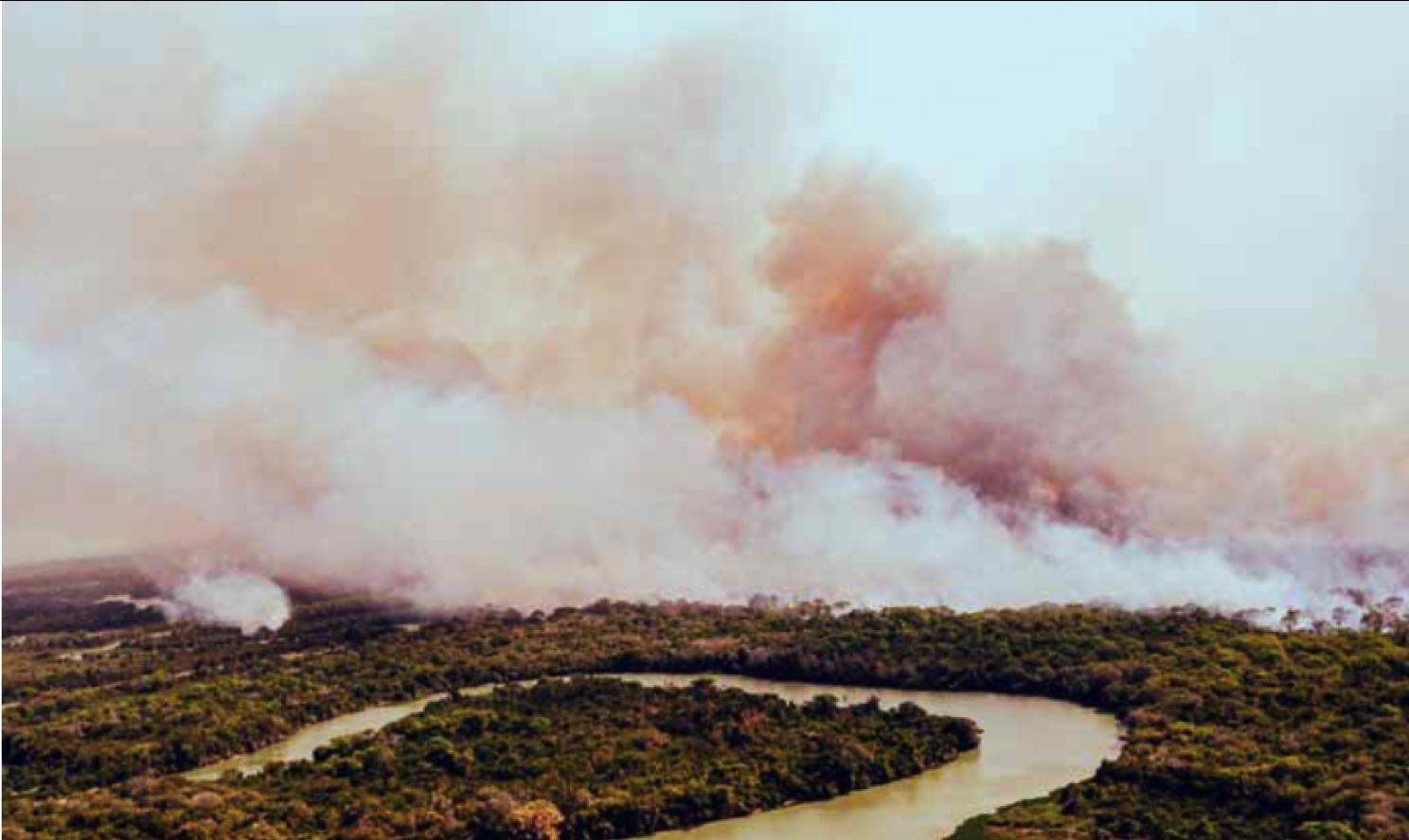 Agronegocio e incendios en tiempos de crisis
